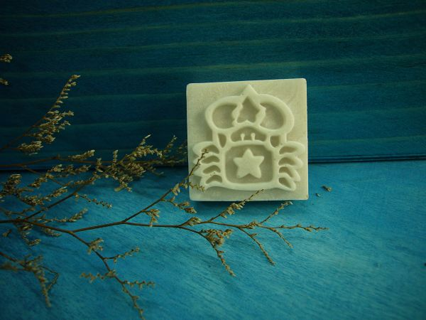 100-16樹脂皂章 巨蟹座