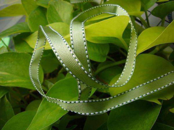 緞帶-3 軍綠跳點緞帶(寬1cm)*5碼