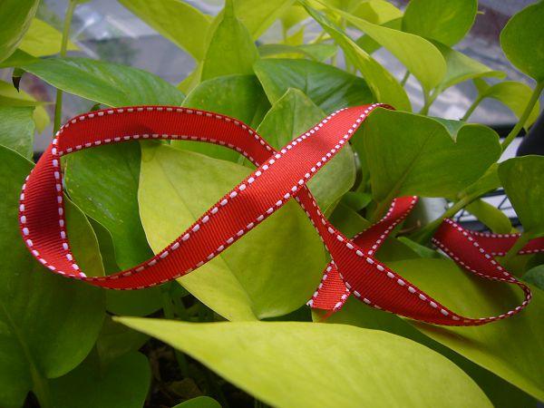 緞帶-4 大紅跳點緞帶(寬1cm)*5碼