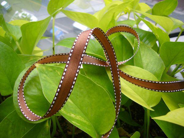 緞帶-5 茶褐跳點緞帶(寬1cm)*5碼