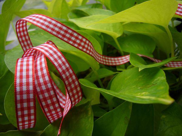 緞帶-12 小紅格子帶(寬1cm)*5碼